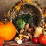 מסעדות  טבעוניות בתל אביב: המלצות למקומות מיוחדים באמת